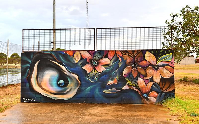 Street Art Cowell SA