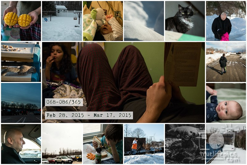 Project 365 - Page 5.jpg