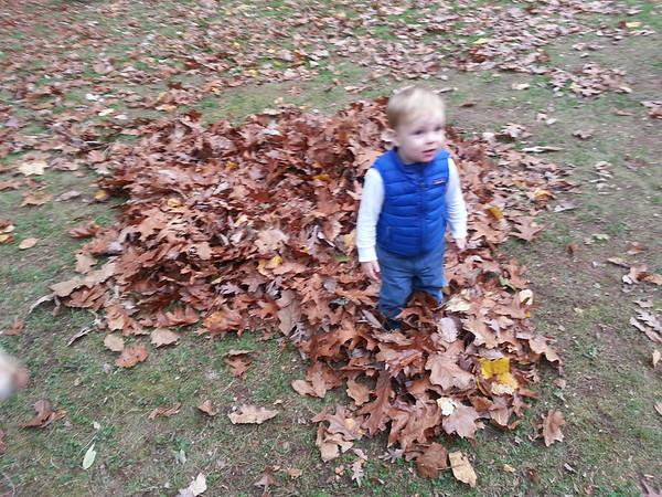 Fall play in Paoli