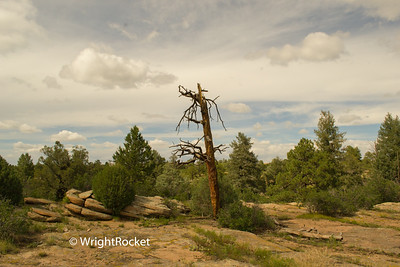 Castlewood Canyon State Park in Colorado