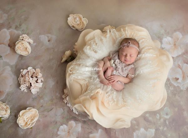 Kelly McCann Newborn Session