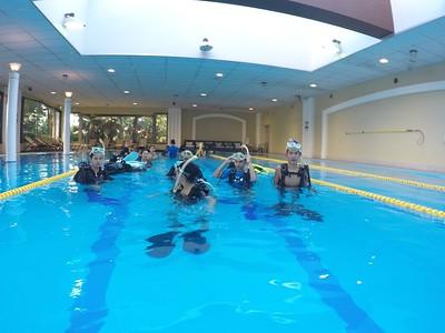 Grade 10: Okinawa Diving