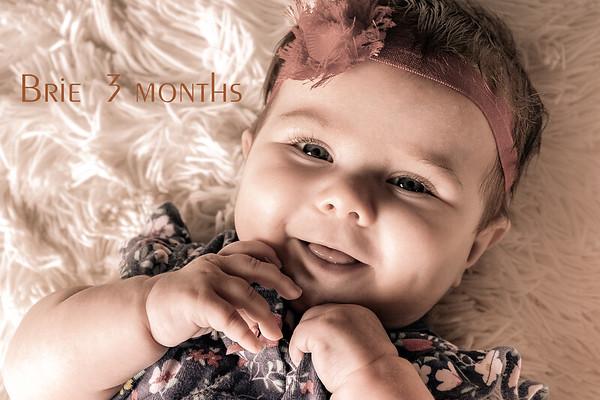 Brie 3 months