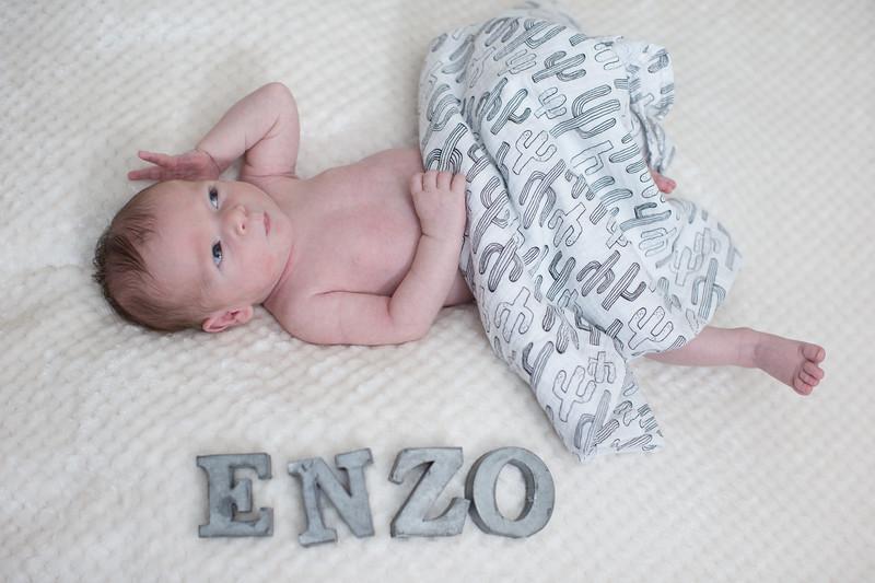 Enzo-71.jpg