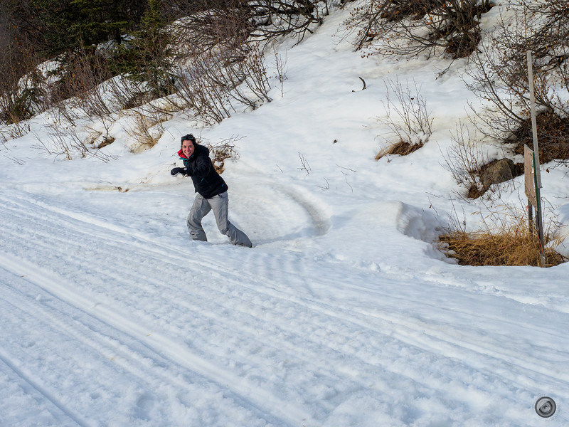 20190325_Blaire_and_Liz_Mushing_83.jpg