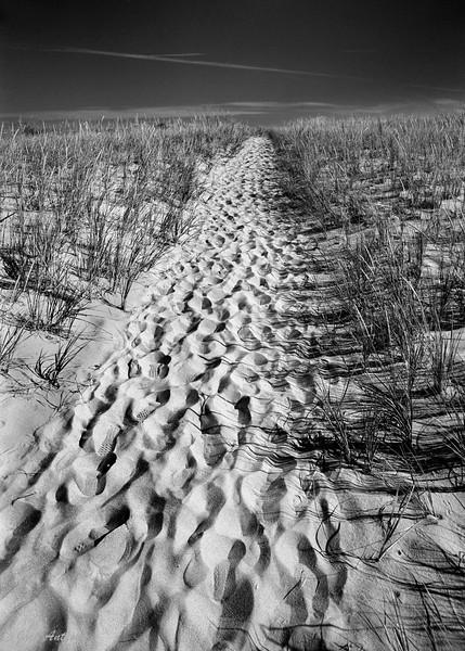 Great Bear Dunes, Mi
