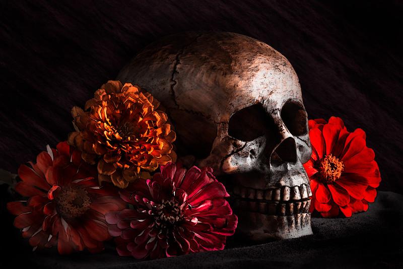 20141009-Skull-experiments.jpg