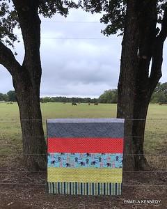 2018 08-19 Wyatt Robert Kennedy's quilt