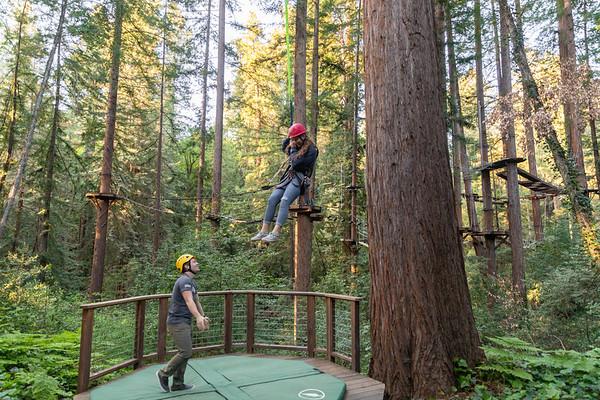 2019 Sequoia
