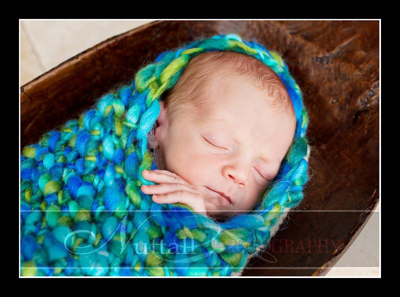 Champ Newborn 21.jpg