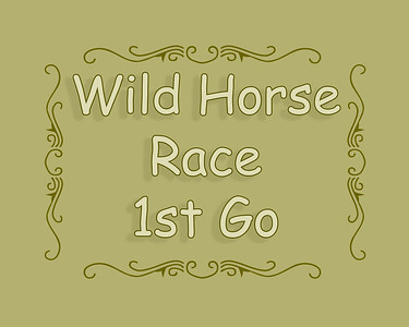 Patricia Rodeo 2018 Wild Horse Race 1st Go