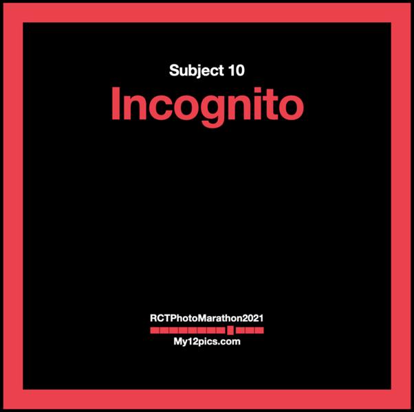 10) Incognito