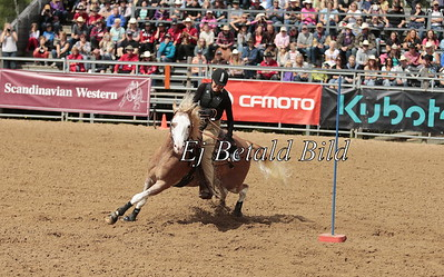 2013 Western Event