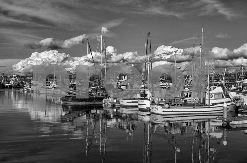 Seattle, Fishermen's Terminal, salmon fishing