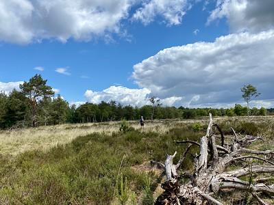 Ede Trail 24km | 07-06-2020