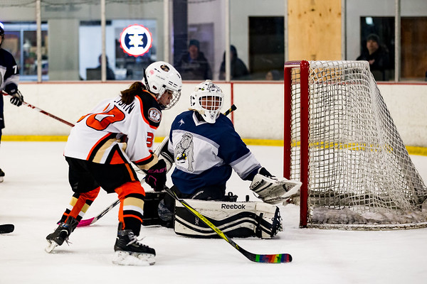 Ice Dogs Vs Lady Ducks May 26, 2019