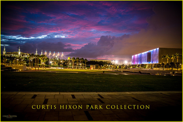Curtis Hixon Park Collection