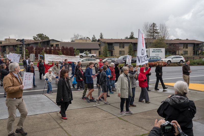 Tam and Redwood Walkout (56 of 91).jpg