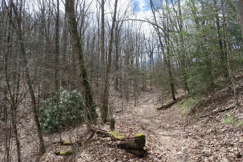 Deep Gap Trail - 3,800'