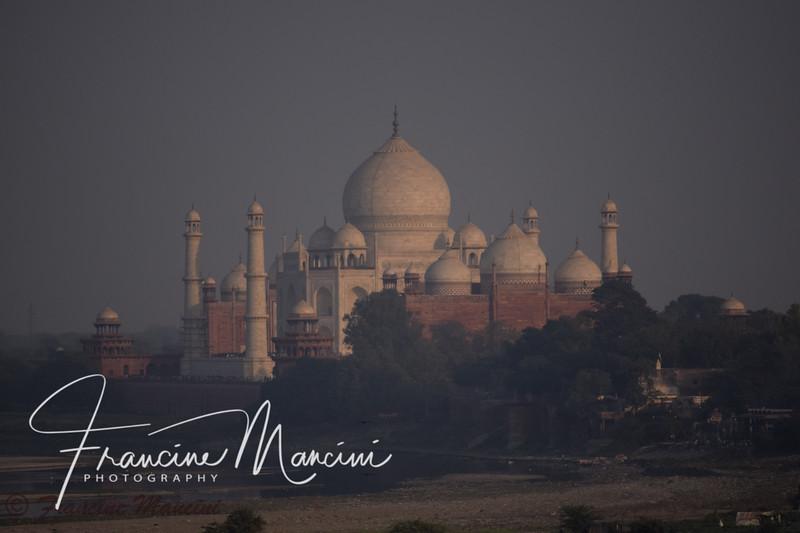 India  (2184 of 5540).jpg