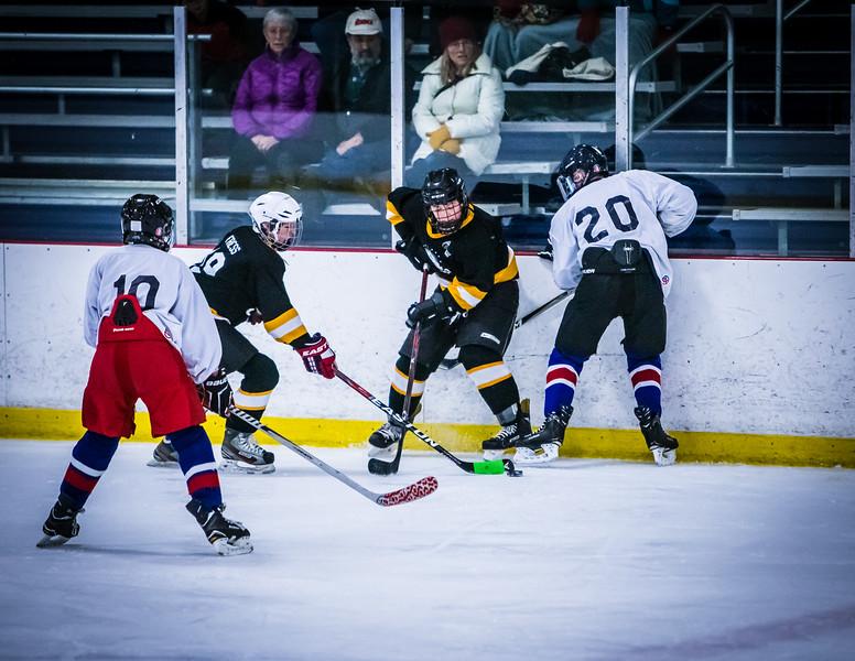 Bruins2-336.jpg