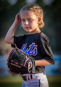 2015 The Mets 15-03-16