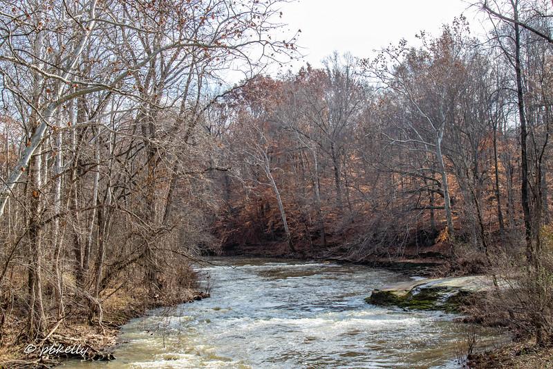 river 112518-6.jpg