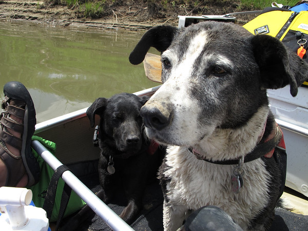 Yampa River Canoe Trip