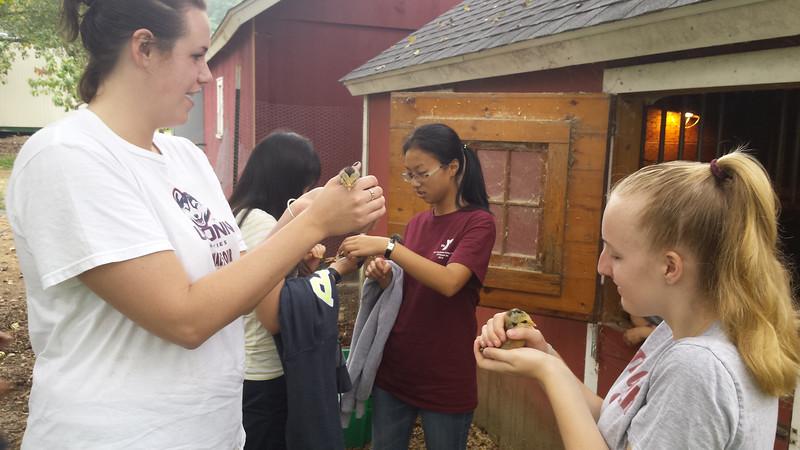 Ms Stevenson with Gunnery Students at Farm.jpg