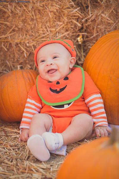 pumpkinpatrick-0007.jpg