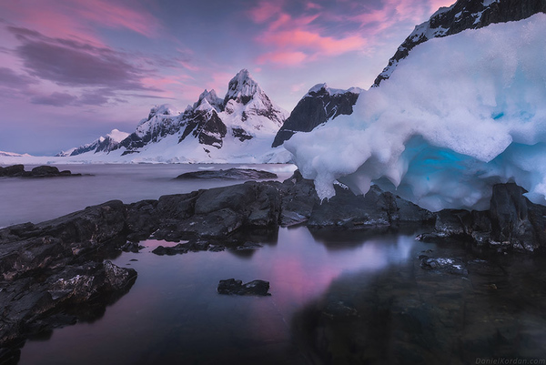 Antarctica Photo Workshop