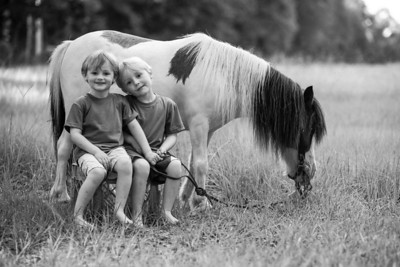 Boys and Ponies