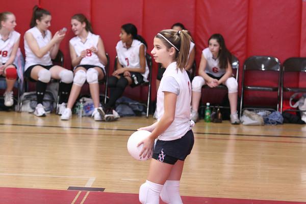 20070103 Samantha's Volleyball