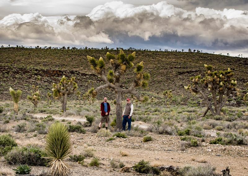 Dad-Joel-Joshua-trees-atcabin-Death-Valley.jpg
