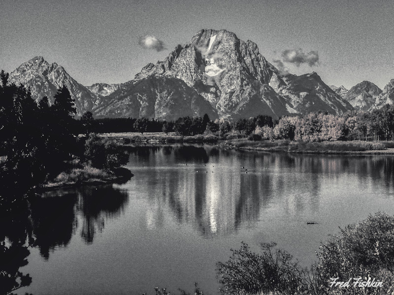 Teton Tuesday 6.jpg