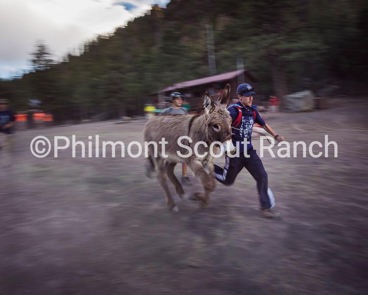 Justin Kernes. A scout races his burro at Harlan.jpg