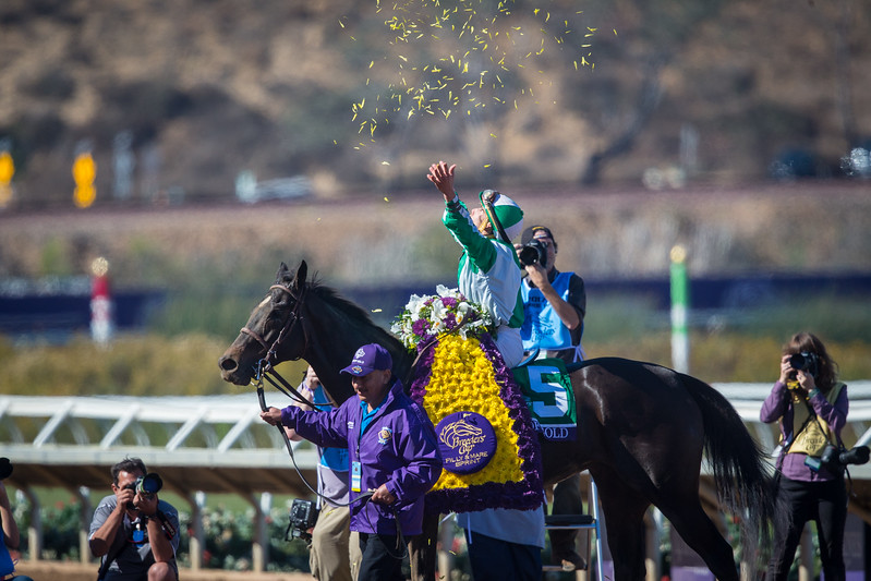 Bar of Gold (Medaglia D'Oro) wins the BC Filly & Mare Sprint at Del Mar on 11.4.2017. Irad Oritz Jr. up, John Kimmel trainer, Chester and Mary Broman owners.