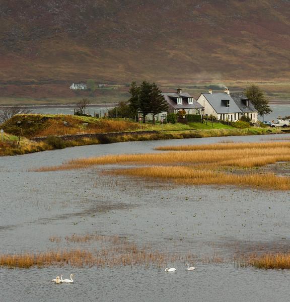 Scotland_Oct_2014__X1A1945.jpg