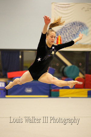 Gymnastics - High School 2007-8