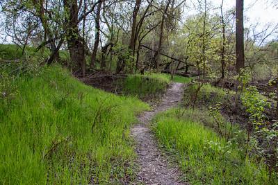2020-03-17 South Fork Preserve