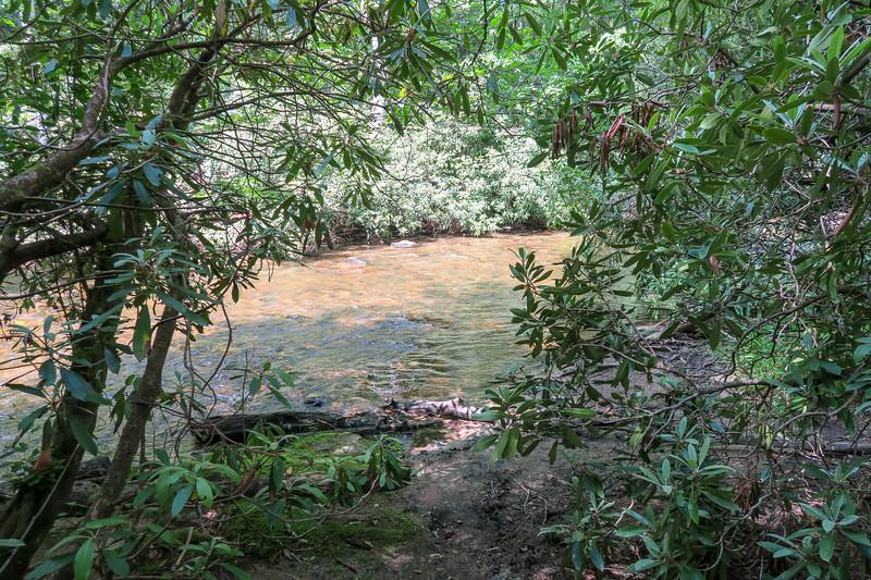 Riverside Trail @ South Fork Crossing #3 -- 2,360'