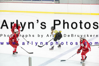 Girls Hockey vs Willmar