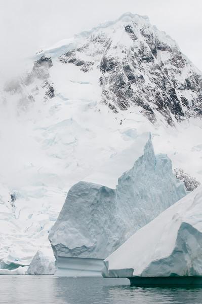 Antarctica 2015 (36 of 99).jpg