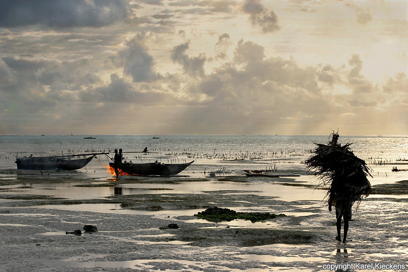 T.03_38.Oostkust Zanzibar.Schoonbranden boten.jpg