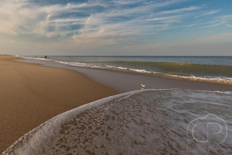 Delaware Shore-1.JPG