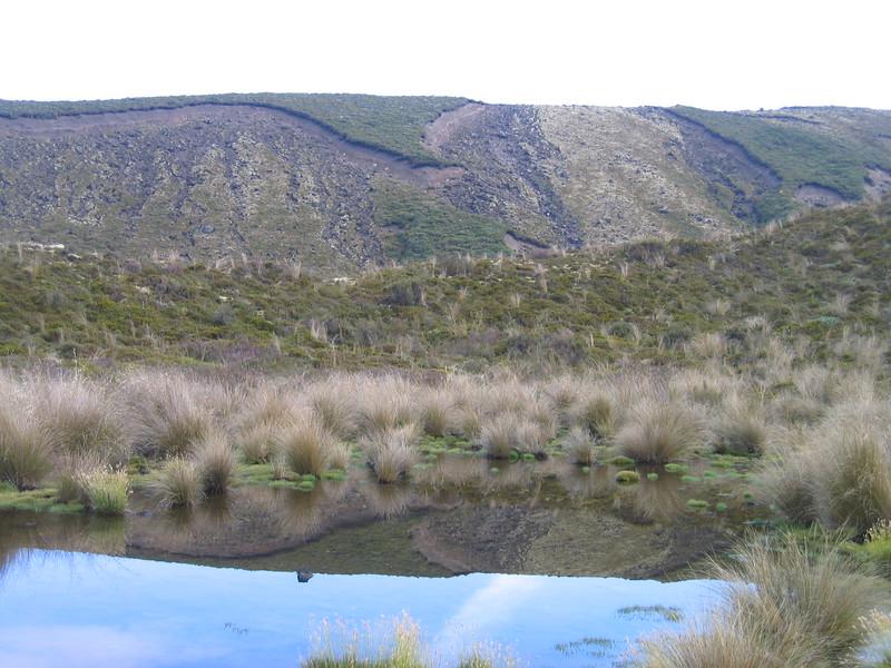 New Zealand 117.jpg