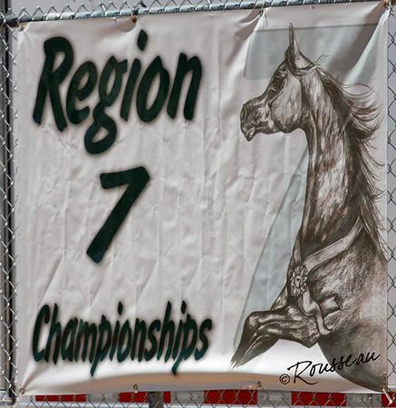 Region 7 Arabian