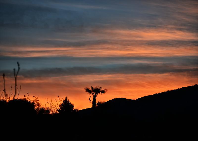 NEA_1240-7x5-Sunrise.jpg