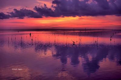 2015 Sunsets