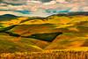 503-Northumberland Hills-wgyle2_0058_tonemapped-Edit
